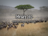 2012-Feb-3