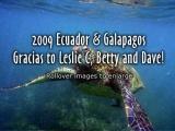 2009-ecuador-galapagos