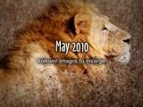 2010-May
