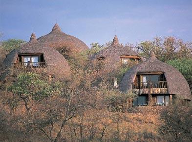 serengeti1